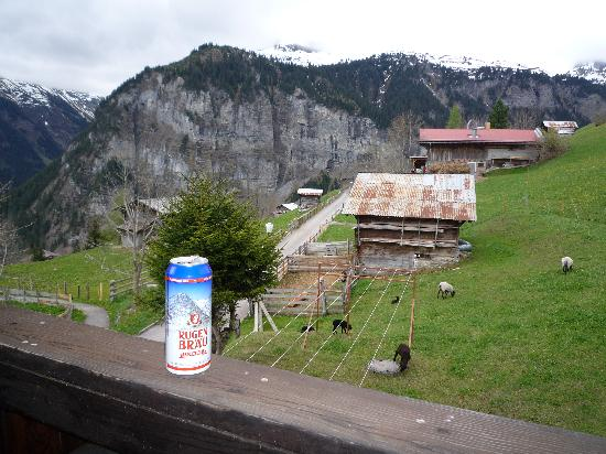 Hotel Mittaghorn: Enjoying a European beer on the big balcony enjoying the relaxing sound of the goat's bells!