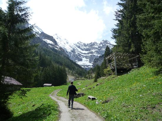 Hotel Mittaghorn: Scenery while on a hike from Gimmelwald down to Stechelberg