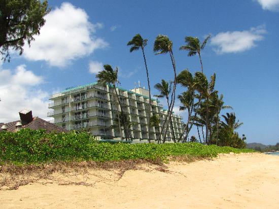 Pat's at Punalu'u: building from beach