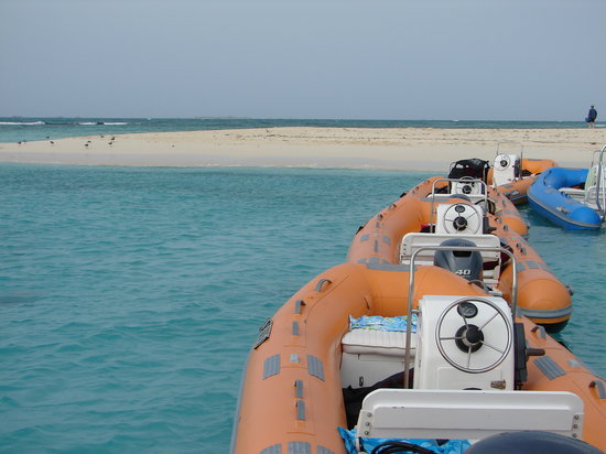Mini Boat Adventures: the mini boats you drive