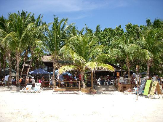 Bananarama photo de bananarama beach and dive resort for Roatan dive resort