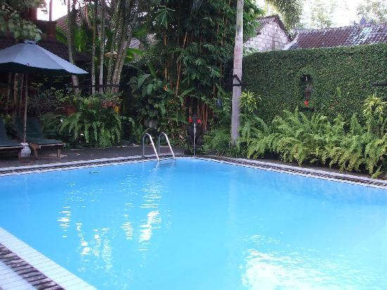 Mold In The Pool Picture Of Puri Garden Hotel Restaurant Ubud Tripadvisor