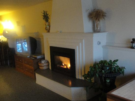 Inn of the Lost Coast: fireplace next to hot tub