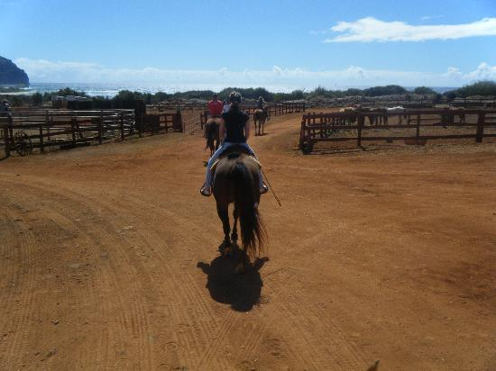 CJM Country Stables : Leaving the ranch and heading toward the ocean