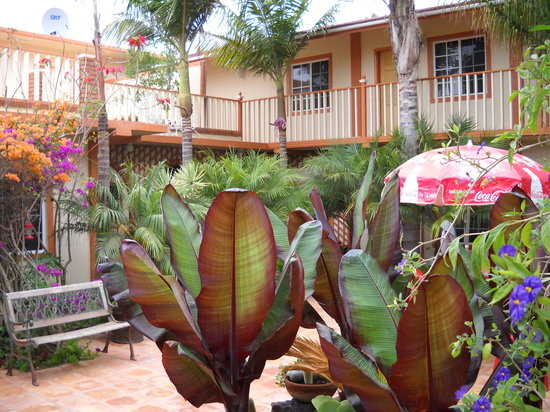 Photo of Hotel Jardines Baja Valle de San Quintin