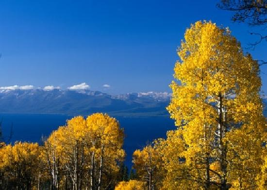 Саут-Лейк-Тахо, Калифорния: Summer in Beautiful Lake Tahoe