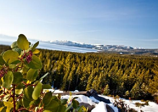 South Lake Tahoe, Kaliforniya: Winter in Beautiful Lake Tahoe