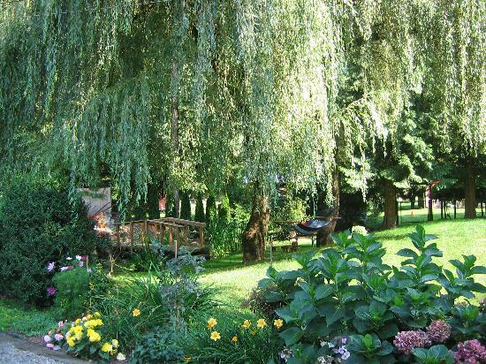 South Garden Bed and Breakfast: Garden Hammocks