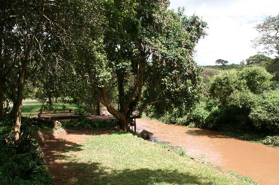 Masai Lodge: Beside the river