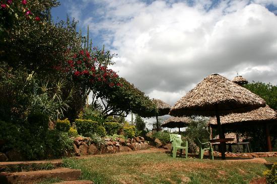 Masai Lodge: Pool area