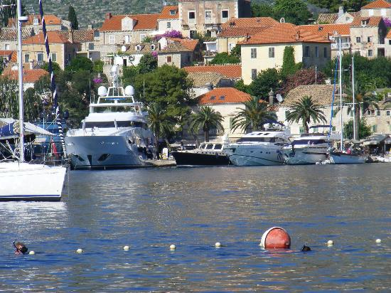 Hotel Croatia Cavtat : View from the beach
