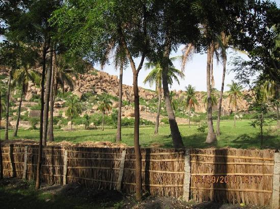 Goan Corner: Our View