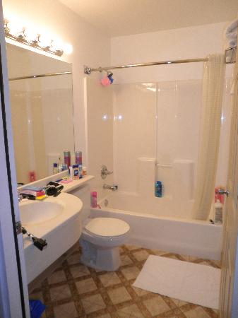 Microtel Inn & Suites by Wyndham Eagle River/Anchorage Are: Bathroom