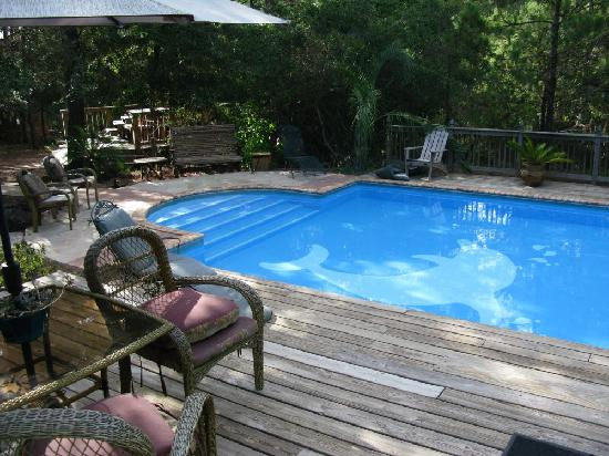 Dolphin swimming pool and cottage picture of pine canyon bed breakfast spa smithville for Poole dolphin swimming pool prices