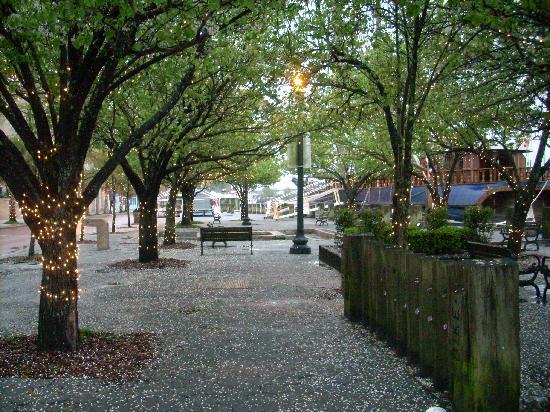 Best Western Plus Coastline Inn: Walking downtown on River Front