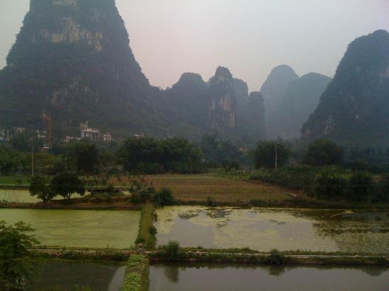 Hidden Dragon Villa: View from the room