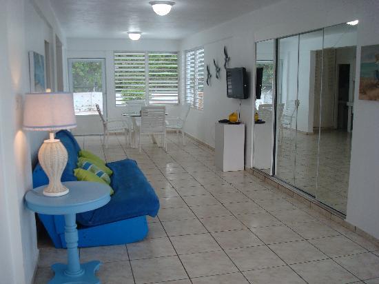 Paraiso Azul : FIRST LEVEL LIVING ROOM