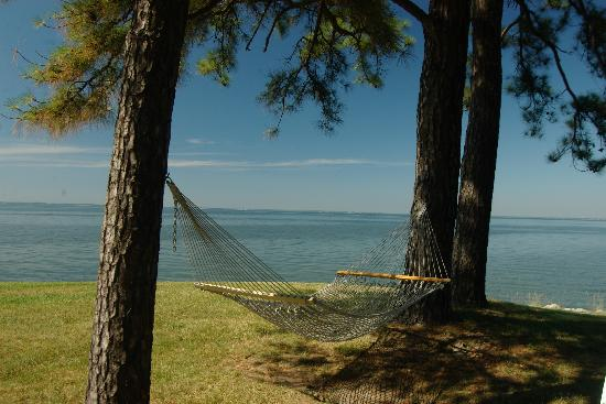 Wades Point Inn on the Bay: Nothing says summer more than a hammock