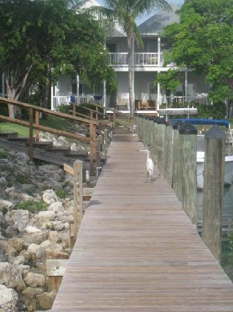 Hawks Cay Resort: Docks by the Villa!