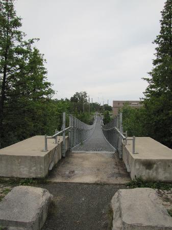 Ranney Gorge Suspension Bridge: Bridge