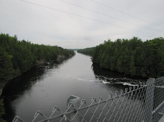 Ranney Gorge Suspension Bridge: View