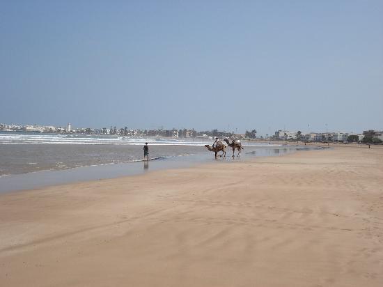 Riad Marosko: Essouira Beach