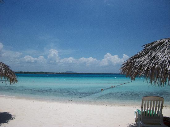 Hotel Playa Costa Verde: Beach