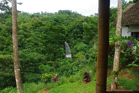 Villa Tavida Lodge & Spa: Waterfall