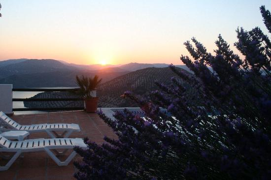 Cortijo La Loma: lavender and sunrise