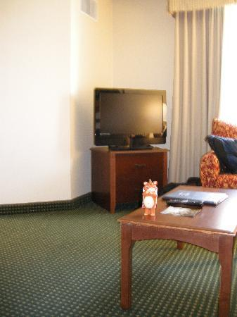 Residence Inn Houston West University: TV