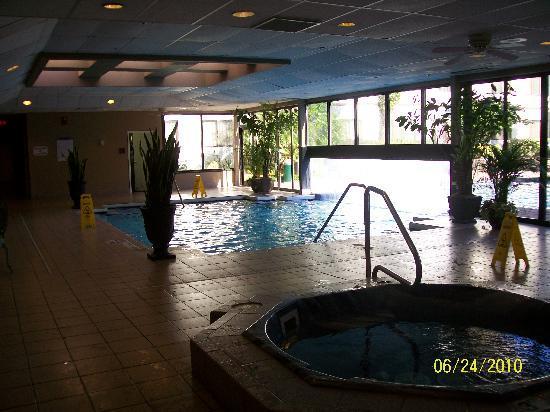 Sheraton Hotel Orlando Florida Near Universal Studios