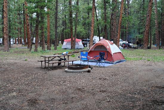 North Rim Campground: campsite