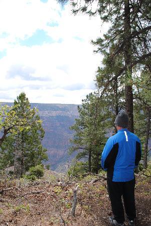 North Rim Campground: on trail