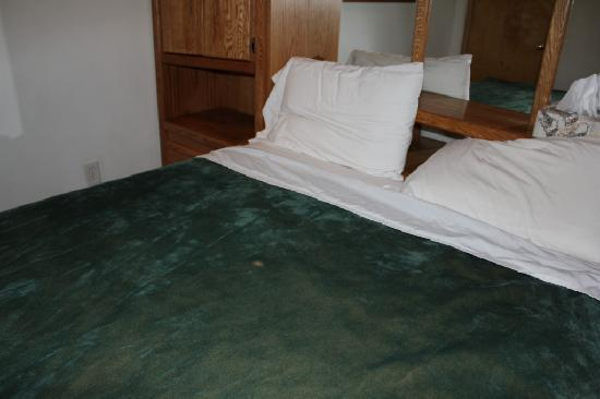 7 Gables Inn & Suites: cigarette burn stain on blanket