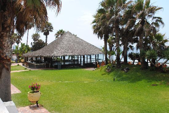 Las Rocas Resort & Spa: the Palapa... restaurant . bar