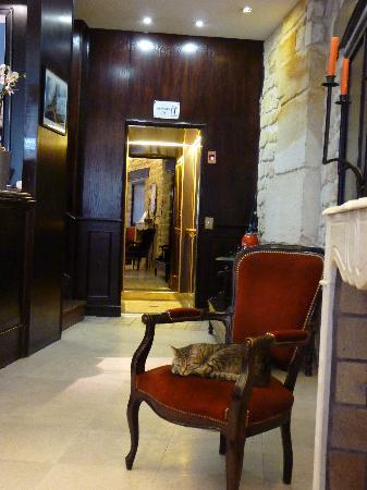 Hotel Europe Saint Severin: Isis - hotel security cat