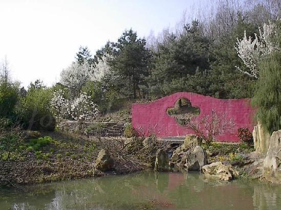 Mondo Verde: Chinese garden