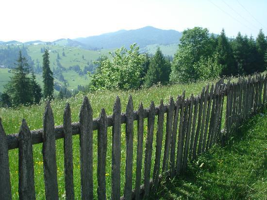 Countryside surrounding Moldovita Monastery