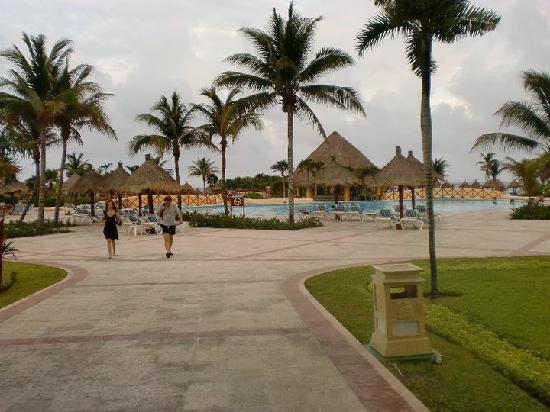 Dolphins - Things to do in Tulum - Bahia Principe Hotels |Grand Bahia Principe Tulum Animals