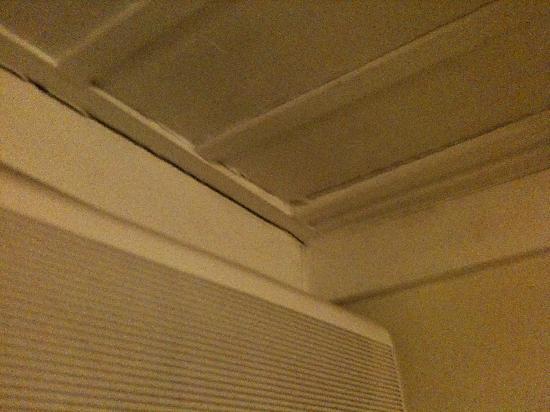 Antica Locanda Palmieri: ceiling