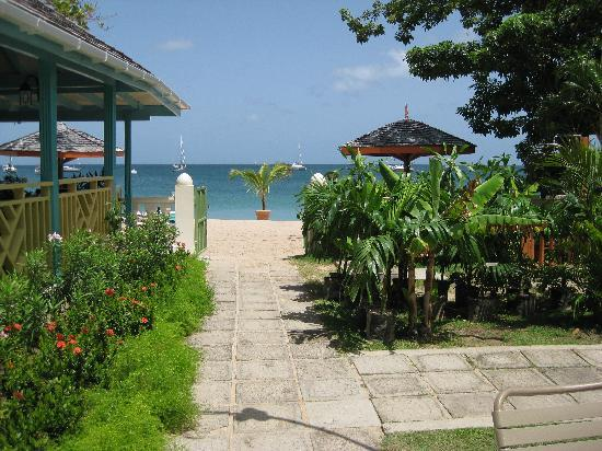 Bay Gardens Beach Resort: only a few steps to the beach!