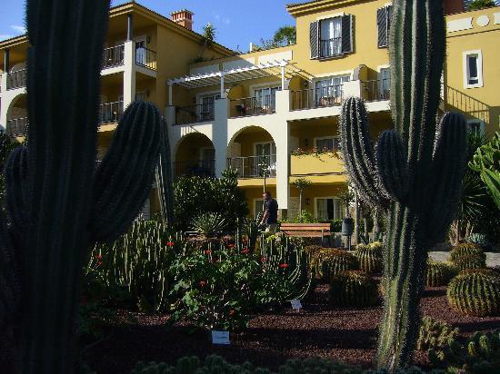 Cordial Mogán Playa: jardin de cactus à l'hôtel