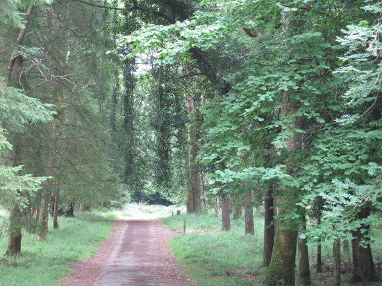 Portumna, Ireland: special needs trail