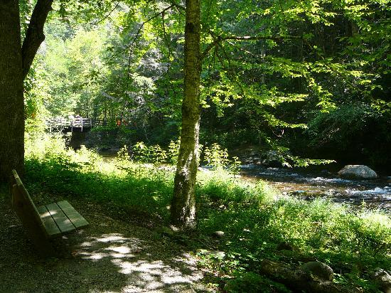 Indian Creek Falls: One of the benches (wooden footbridge in background) along the Deep Creek Trail