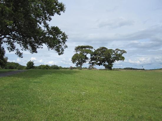 Oranmore, Irlanda: Rinville Park