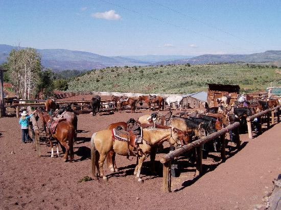 Black Mountain Ranch: Our transport awaits