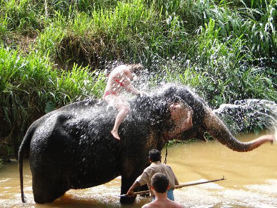 Club Palm Bay Hotel: Hannah having an elephant shower