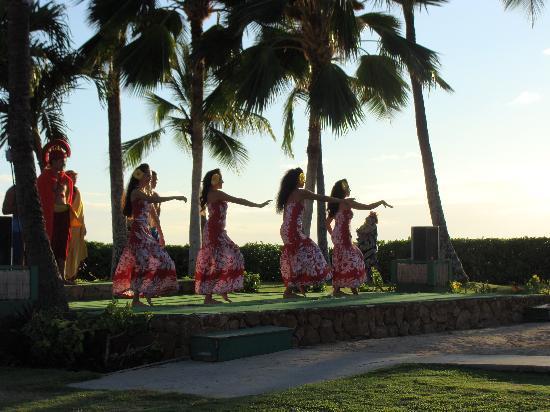 Honolulu Hi Paradise Cove Luhau Hawaii