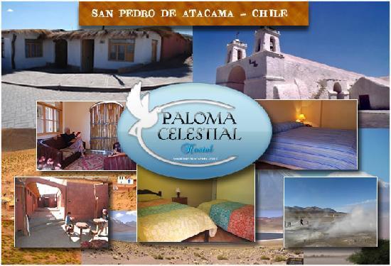 Hostal Paloma Celestial: UN OASIS EN SAN PEDRO DE ATACAMA