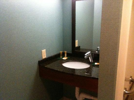 Hyatt Place Roanoke : Handicap accessible bathroom